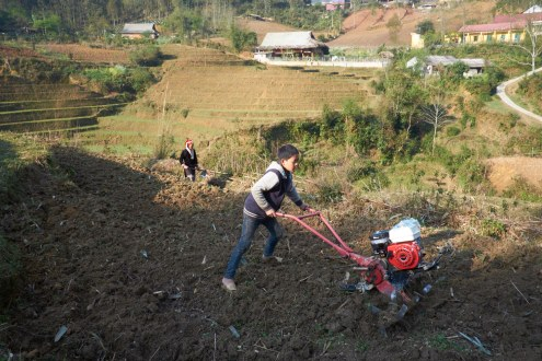 A Red Yao (also known as Red Dao) boy works on his family farm. A child often starts working on the fields from the age of 5.