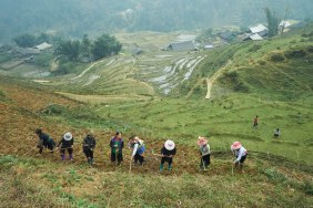 Family farming is a common practice in the village of Sin Chai, where an extended families join forces to work in each other farms. Their fields can be really high up on mountains.